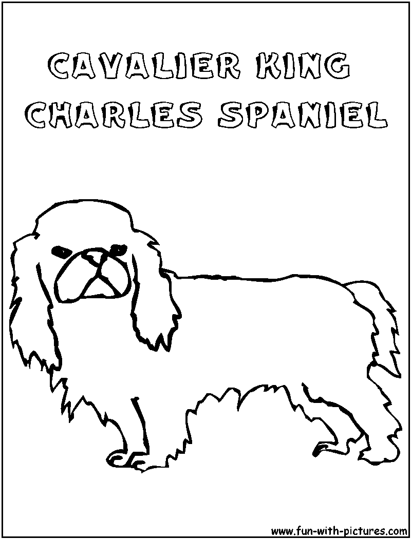 King Charles Coloring Pages