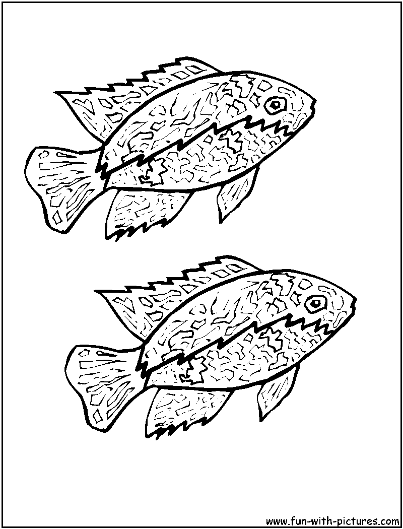 fish coloring pages free printable colouring pages for