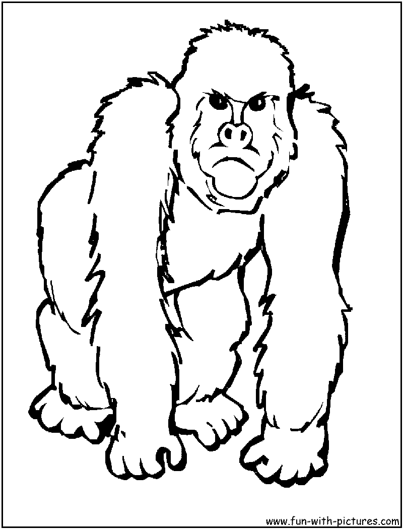 ape coloring pages printable - photo#17