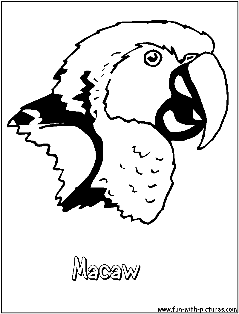 Parrots coloring pages free printable colouring pages for Macaw coloring page