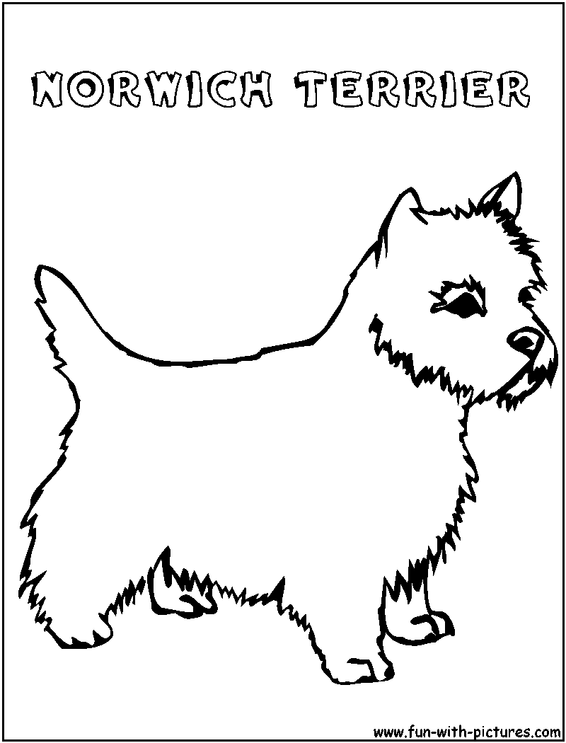 coloring pages of rat terriers - photo#23