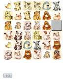 baby animal pictures memory game