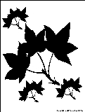 autumn leaves silhouette