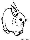 Easter Bunnies Coloring Page5