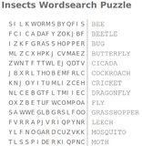 insects wordsearch puzzle